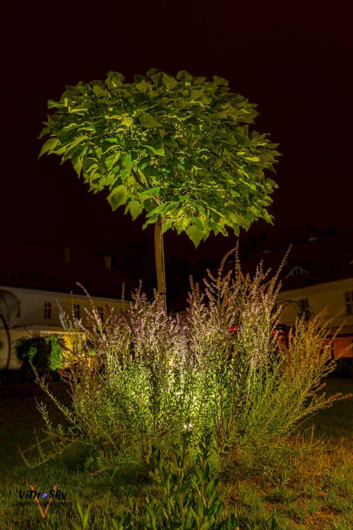 Zdjęcie oświetlenia na dworze biskupim w Nysie_Vidrosky